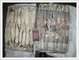 Seafrozen Illex Squid Whole Round