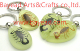 real bug,insect amber keychains,key ring,so cool gift,so unique gift,amber world gift