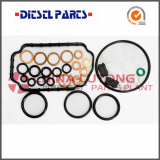 Repair Kits for Ve Pumps_Diesel Fuel Pump Rebuild Kits