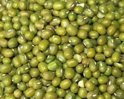 Green Dried Mung beans for Sale