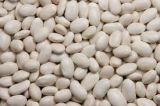 White Kidney Beans for Sale