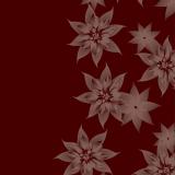 PRINPIA_04.jpg