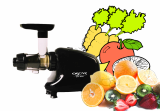 Single screw juicer