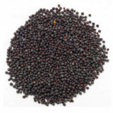 Well_Chosen Black Mustard Seeds