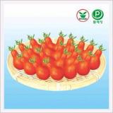 Tomato, Red Jorong