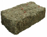 Meadow Hay can ship buy container load