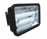 Long-life electrodeless floodlight (QC-FW007)