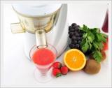 Hurom Single Juice Extractor