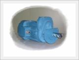Geared Motor Model-a