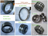 SL series full complement cylindrical roller bearings for grabs, motors, gearbox-THB BEARINGS