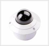 Fixed IP Dome Camera