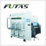 300mm H2 Ashing System (FUTAS)