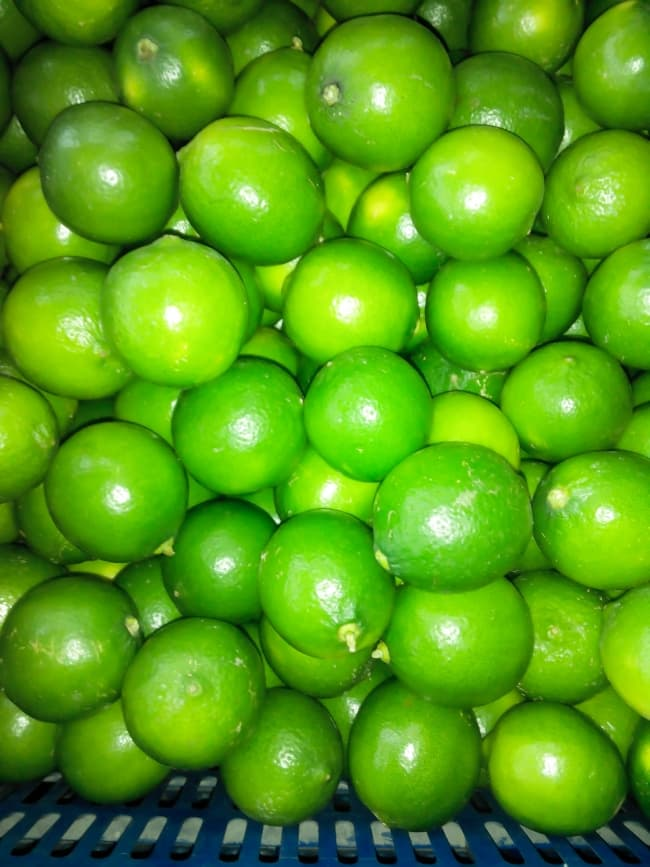 Lime _ Lemon