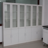 Lab Cabinets_Chemical Storage Cabinets