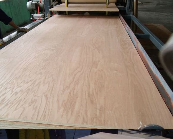 Cheap Price Commercial Plywood for Furniture