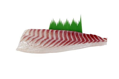 fishy fillet_freezing_