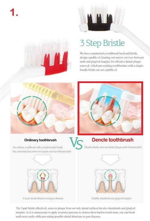 DENCLE ANDANTE FUNCTIONAL TOOTHBRUSH_10 Pieces