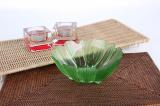 Anemone (Green)