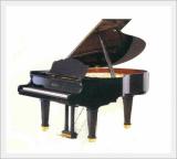 Piano (Grand / RC-160)
