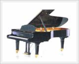 Piano (Grand / RC-215)