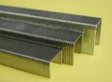 BeA 71 series staples