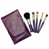 Travel Tote Brush Set