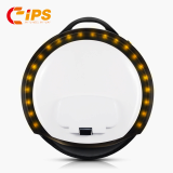 IPS142 Zero 260WH Battery Unicycle Scooter