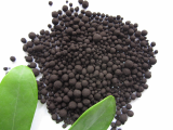 Nitro Humic Acid in Granular Form