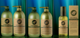 Phyton Therapy Peppermint Cool Shampoo _ Henna Shampoo