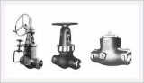 PSB( Pressure Seal Bolted) Valves