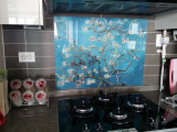 Kitchen grease proof tempered glass panel  _Blossoming Almon_4