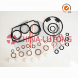 Ve Pump Rebuild Kits for Isuzu_Repair Kits OEM 146600_1120