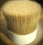 bleached brush bristle