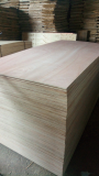 Sell_ Packing purpose plywood grade AB glue MR 100_ hardwood