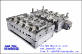 Auto part lens tool plastic injection mould