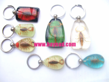 scorpion-key-ring4.jpg