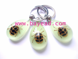 insect-keychains1.jpg
