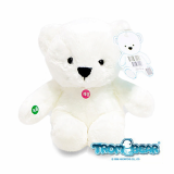 Recordable White Teddy bear