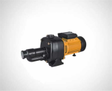 Surface pump_Self_priming pump_JET PUMP DP505_750C-S