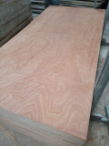 Sell_ Sanding core plywood grade AB glue MR Sapele face back