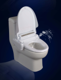 Toilet seat with bidet