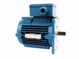 Hoist induction motor-Brake Inside Type
