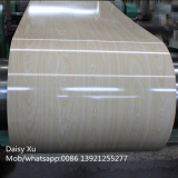 Wood grain prepainted galvanized steel coils _ PPGI coils