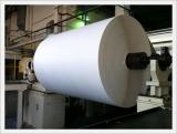 Cotton Linter Pulp