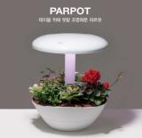 MO GREEN PARPOT_ LED LIGHT PLANT