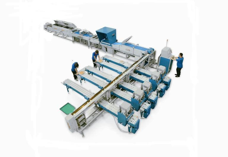 Automatic Egg Grading and Packing Machine