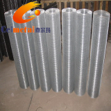 Welded Wire Mesh_ Galvanized Welded Wire Mesh free_ sample