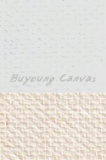 Inkjet Canvas for aqueous pigment inks/Gloss Finished/320gsm