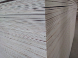 Commercial plywood pure glue MR 100_ directly from Vietnam