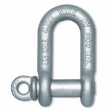 Forged Chain Shackle with Screw Pin-IJIN MARINE LIMITED